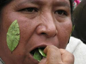Bolivian woman protests against UN report on coca