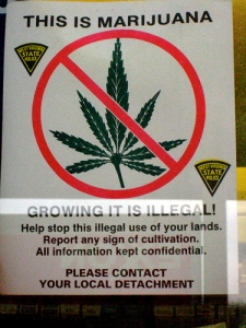 illegal_marijuana_cannabis_poster_fines